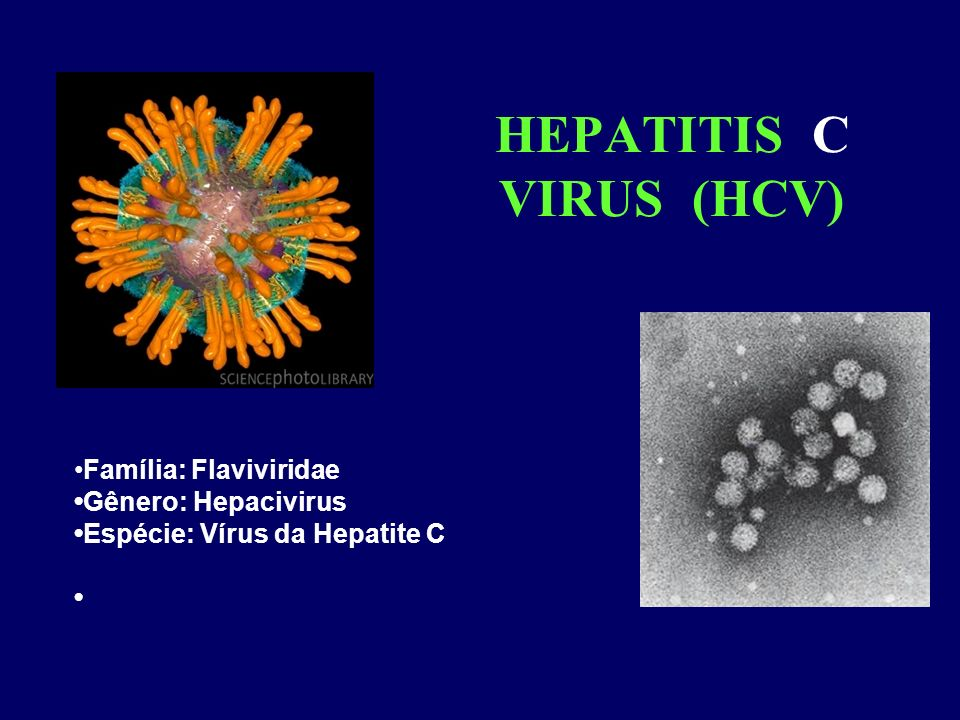 HEPATITIS C VIRUS (HCV) Família: Flaviviridae Gênero: Hepacivirus Espécie: Vírus da Hepatite C