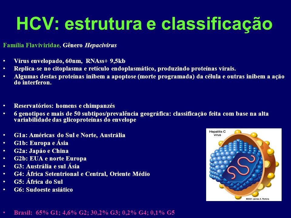 HCV: estrutura e classificação Família Flaviviridae, Gênero Hepacivirus Vírus envelopado, 60nm, RNAss+ 9,5kb Replica-se no citoplasma e retículo endoplasmático, produzindo proteínas vírais.