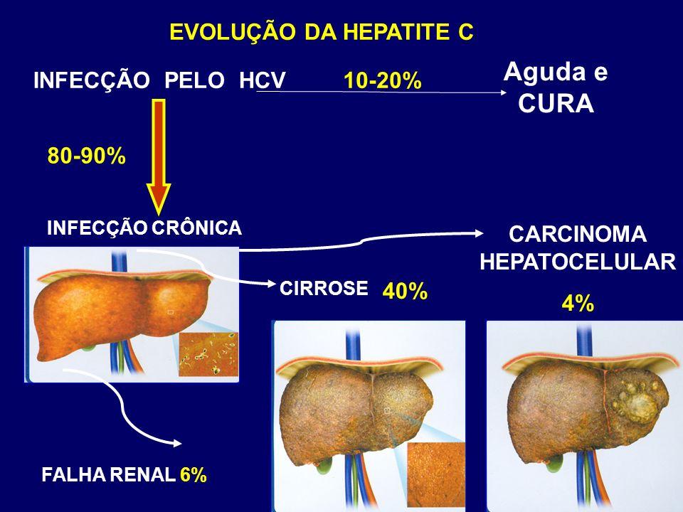 EVOLUÇÃO DA HEPATITE C 10-20% Aguda e CURA INFECÇÃO PELO HCV INFECÇÃO CRÔNICA CARCINOMA HEPATOCELULAR 4% 40% 80-90% Hepatite Fulminante Hepatite Fulminante CIRROSE FALHA RENAL 6%