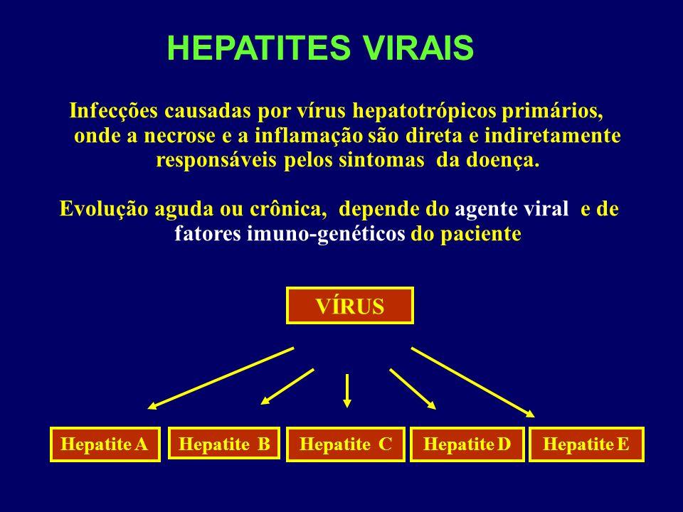 HEPATITES VIRAIS Infecções causadas por vírus hepatotrópicos primários, onde a necrose e a inflamação são direta e indiretamente responsáveis pelos sintomas da doença.