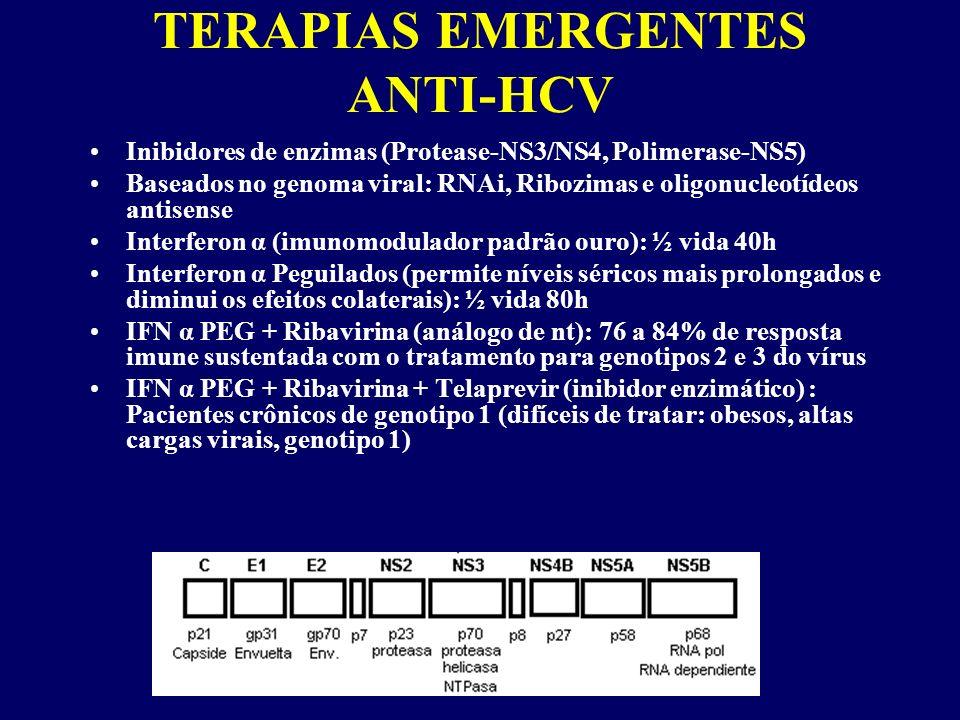 TERAPIAS EMERGENTES ANTI-HCV Inibidores de enzimas (Protease-NS3/NS4, Polimerase-NS5) Baseados no genoma viral: RNAi, Ribozimas e oligonucleotídeos antisense Interferon α (imunomodulador padrão ouro): ½ vida 40h Interferon α Peguilados (permite níveis séricos mais prolongados e diminui os efeitos colaterais): ½ vida 80h IFN α PEG + Ribavirina (análogo de nt): 76 a 84% de resposta imune sustentada com o tratamento para genotipos 2 e 3 do vírus IFN α PEG + Ribavirina + Telaprevir (inibidor enzimático) : Pacientes crônicos de genotipo 1 (difíceis de tratar: obesos, altas cargas virais, genotipo 1)