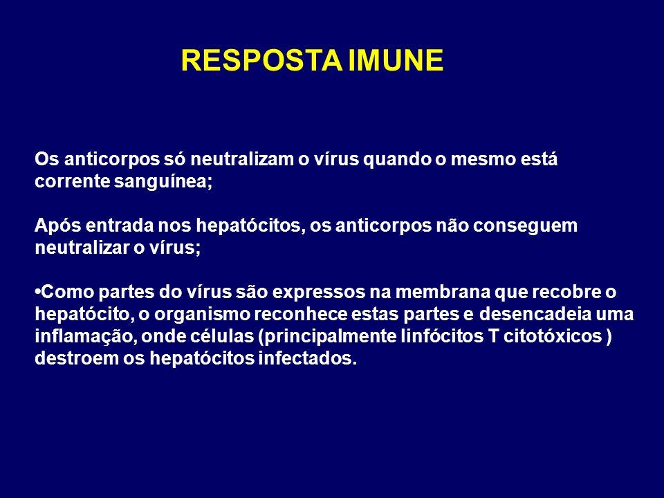 Os anticorpos só neutralizam o vírus quando o mesmo está corrente sanguínea; Após entrada nos hepatócitos, os anticorpos não conseguem neutralizar o v