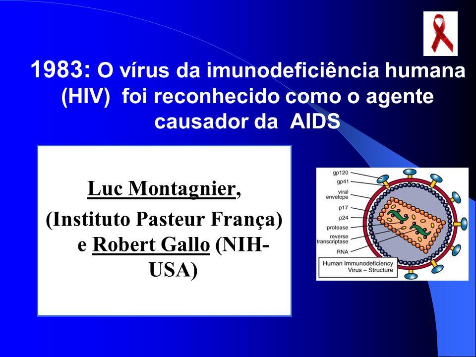 1983: O vírus da imunodeficiência humana (HIV) foi reconhecido como o agente causador da AIDS Luc Montagnier, (Instituto Pasteur França) e Robert Gall