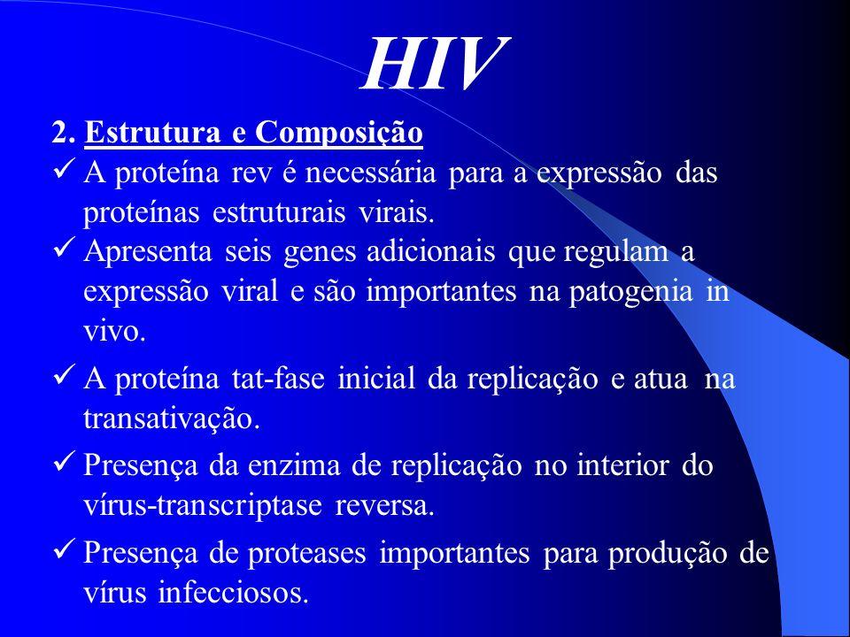 HIV 2. Estrutura e Composição A proteína rev é necessária para a expressão das proteínas estruturais virais. Apresenta seis genes adicionais que regul