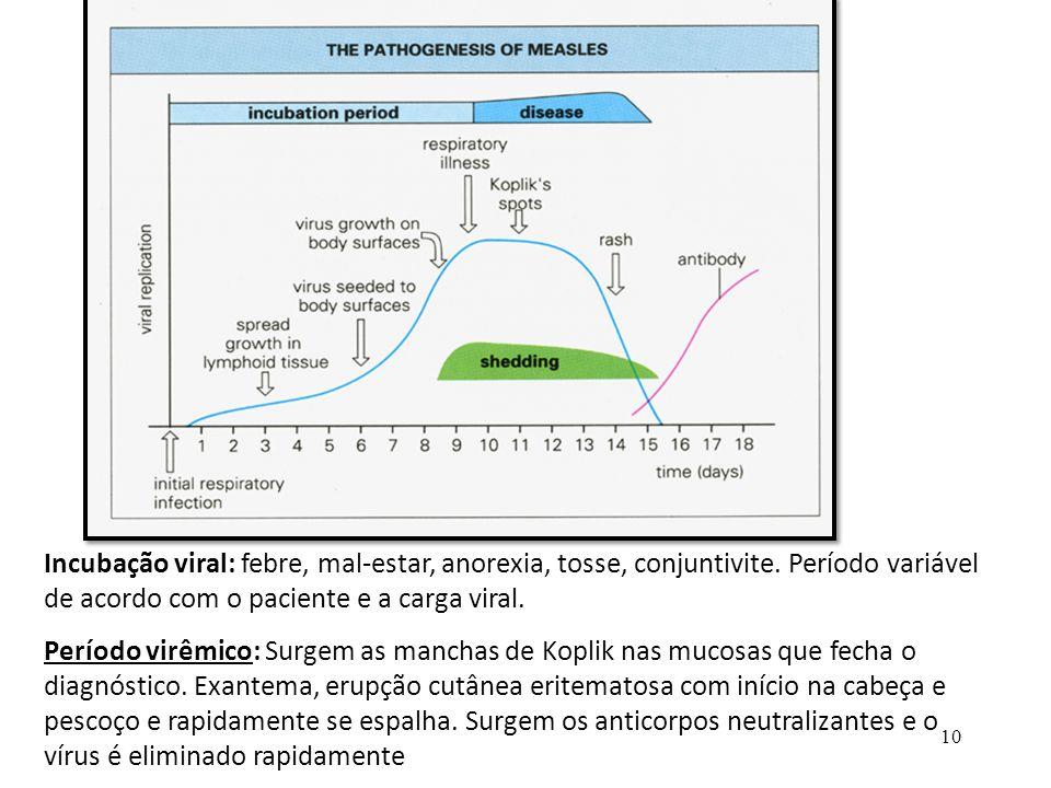 10 Incubação viral: febre, mal-estar, anorexia, tosse, conjuntivite. Período variável de acordo com o paciente e a carga viral. Período virêmico: Surg