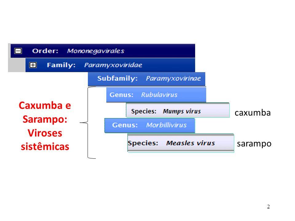 2 caxumba sarampo Caxumba e Sarampo: Viroses sistêmicas