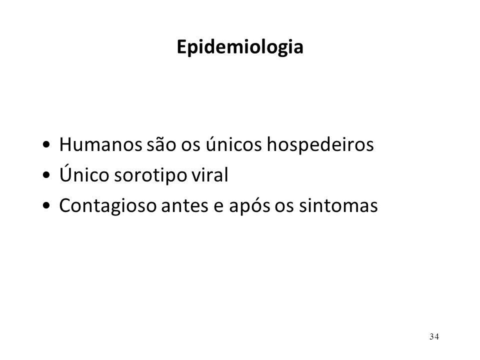 34 Epidemiologia Humanos são os únicos hospedeiros Único sorotipo viral Contagioso antes e após os sintomas