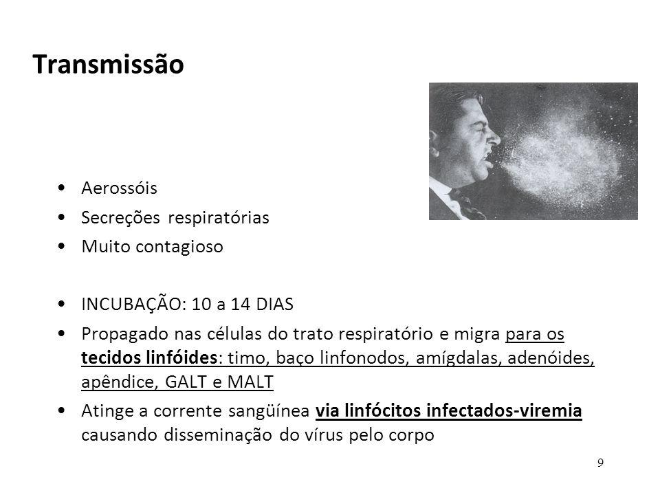 50 PREVENÇÃO DO SARAMPO CAXUMBA E RUBEOLA VACINA TRÍPLICE VIRAL (ATENUADA ) (MMR- mumps-caxumba, measles-sarampo e rubella- rubeola) –Pode ser problemática para imunosuprimidos –Composta pelas cepas wistar RA27/3 do vírus atenuado da rubéola, schwarz de sarampo e RIT 4385 derivado da cepa Jeryl Lynn do vírus da caxumba.