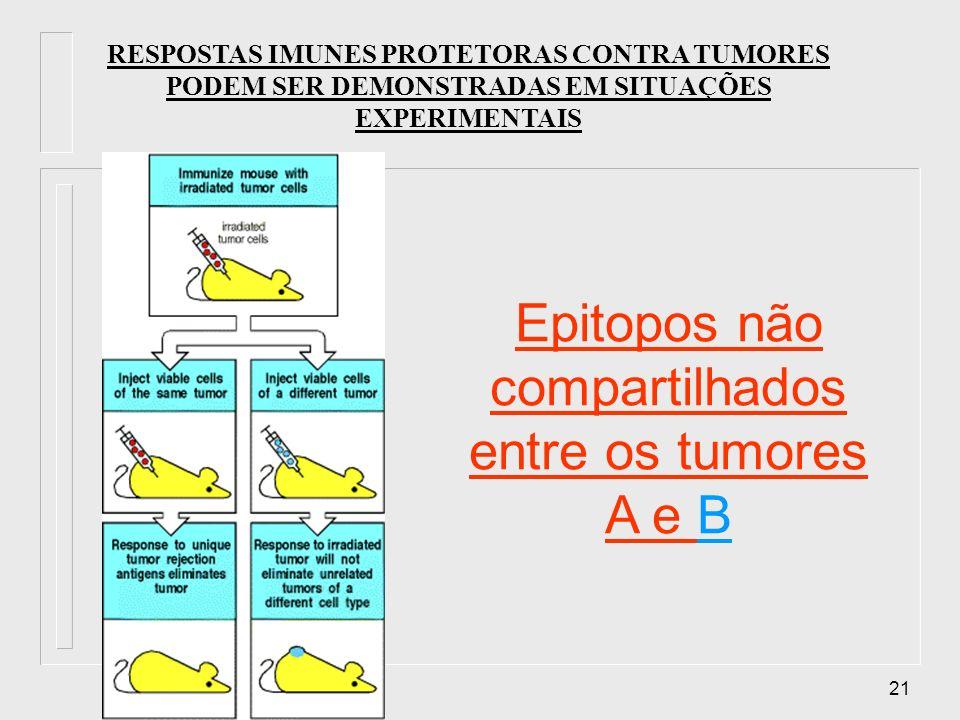 21 RESPOSTAS IMUNES PROTETORAS CONTRA TUMORES PODEM SER DEMONSTRADAS EM SITUAÇÕES EXPERIMENTAIS Epitopos não compartilhados entre os tumores A e B