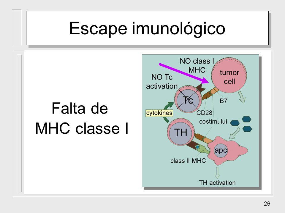 26 Escape imunológico Falta de MHC classe I