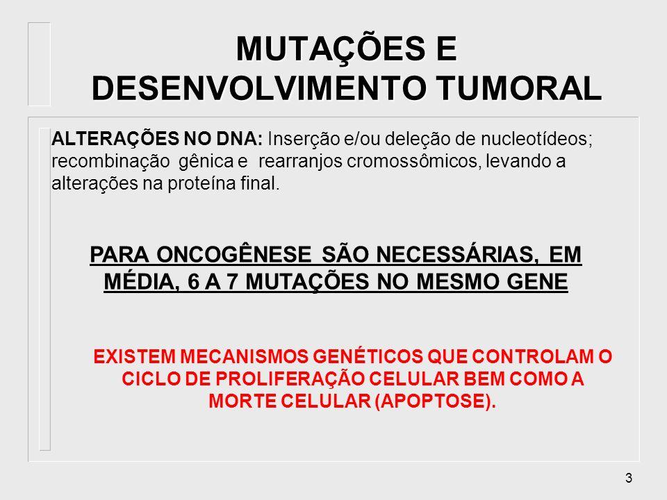 34 Expressão aumentada de MHC-I, possíveis efeitos antitumorais Remissão das células cabeludas de leucemia e fraco efeito em carcinomas IFN-, - IFN- Expressão aumentada de MHC-I, ativação de Tc e NK Remissão de carcinoma ovariano IL-2 Proliferação de LT e ativação de NK Remissão de carcinoma renal e melanoma TNF- Ativação de macrofagos e linfócitos Redução de ascites malígnas Imunoterapia com citocinas