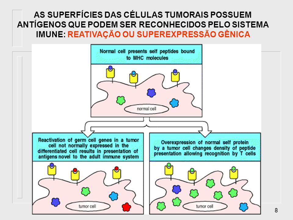 19 Tumores e estimulação da resposta imune Animais podem ser imunizados contra tumores A imunidade pode ser transferida de um animal imune para um animal virgem Anticorpos específicos contra células tumorais podem ser detectados em humanos com alguns tumores malignos Animais podem ser imunizados contra tumores A imunidade pode ser transferida de um animal imune para um animal virgem Anticorpos específicos contra células tumorais podem ser detectados em humanos com alguns tumores malignos