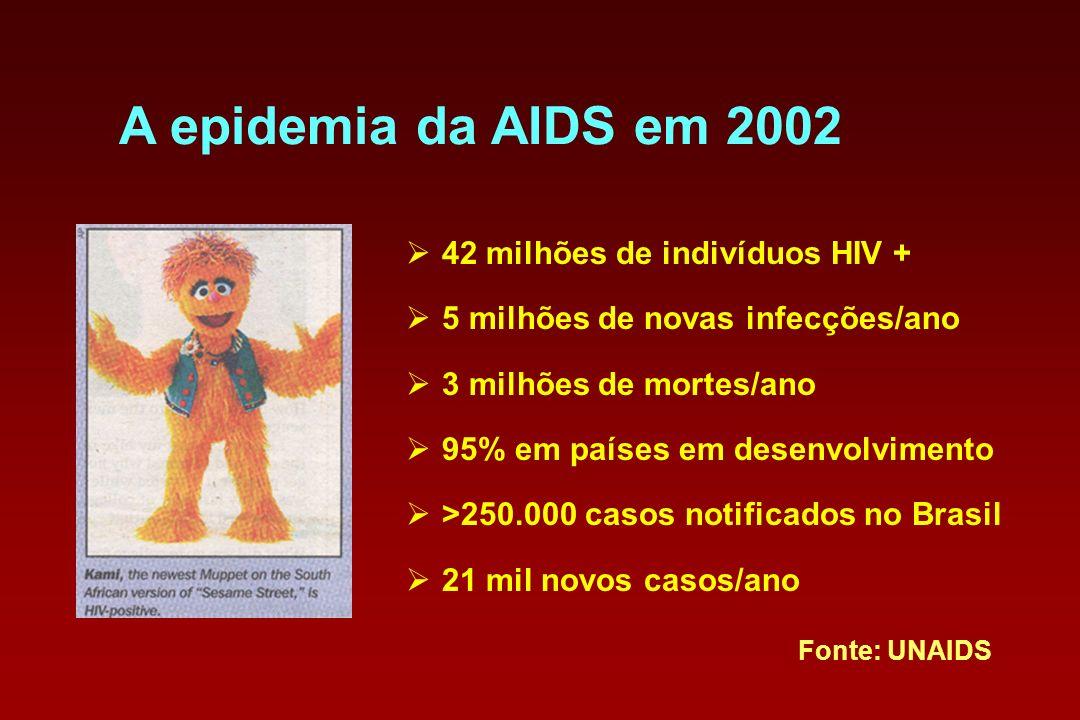 A epidemia da AIDS em 2002 42 milhões de indivíduos HIV + 5 milhões de novas infecções/ano 3 milhões de mortes/ano 95% em países em desenvolvimento >2