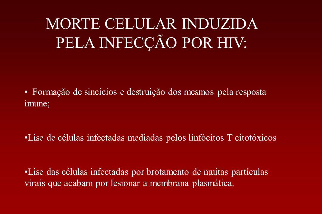 MORTE CELULAR INDUZIDA PELA INFECÇÃO POR HIV: Formação de sincícios e destruição dos mesmos pela resposta imune; Lise de células infectadas mediadas p