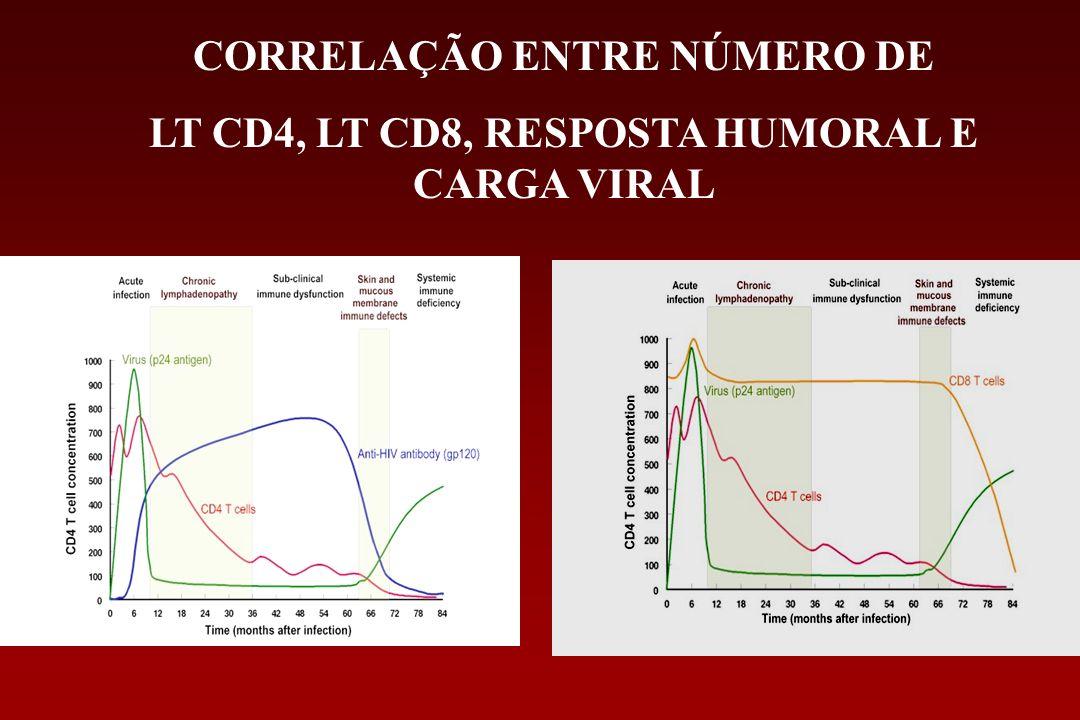 CORRELAÇÃO ENTRE NÚMERO DE LT CD4, LT CD8, RESPOSTA HUMORAL E CARGA VIRAL