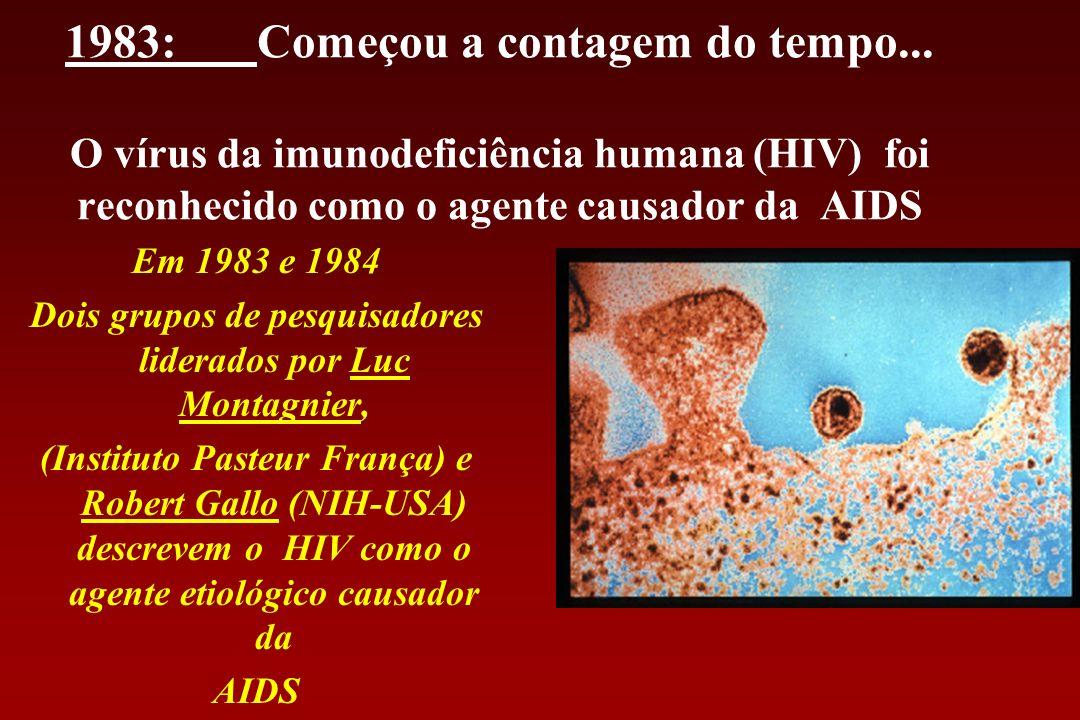 1983:Começou a contagem do tempo... O vírus da imunodeficiência humana (HIV) foi reconhecido como o agente causador da AIDS Em 1983 e 1984 Dois grupos
