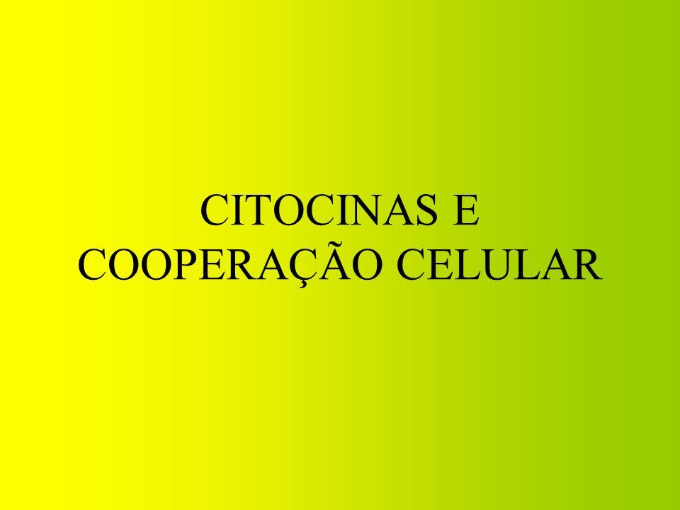 CITOCINAS E COOPERAÇÃO CELULAR