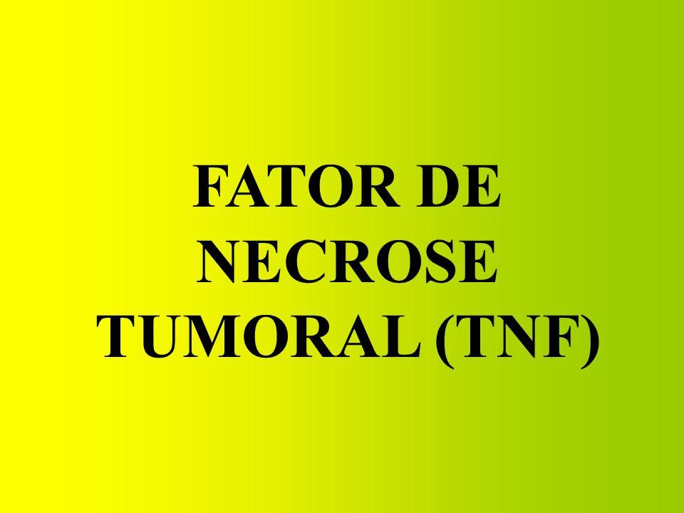 FATOR DE NECROSE TUMORAL (TNF)