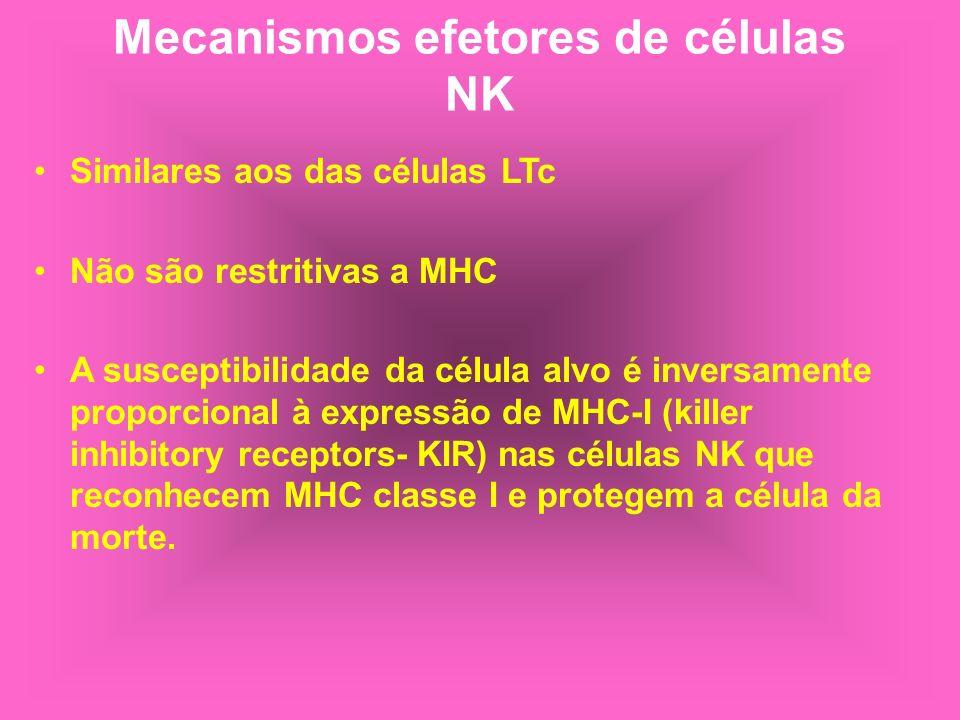 Mecanismos efetores de células NK Similares aos das células LTc Não são restritivas a MHC A susceptibilidade da célula alvo é inversamente proporciona