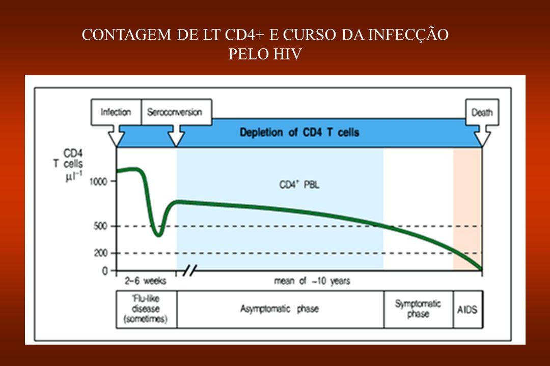 CONTAGEM DE LT CD4+ E CURSO DA INFECÇÃO PELO HIV
