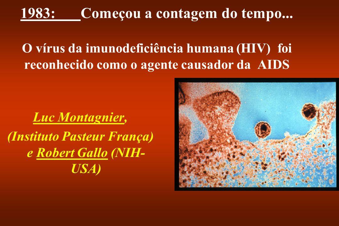 DIMINUIÇÃO DO NÚMERO DE LT CD4+