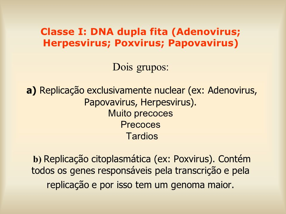 Classe I: DNA dupla fita (Adenovirus; Herpesvirus; Poxvirus; Papovavirus) Dois grupos: a) Replicação exclusivamente nuclear (ex: Adenovirus, Papovavir