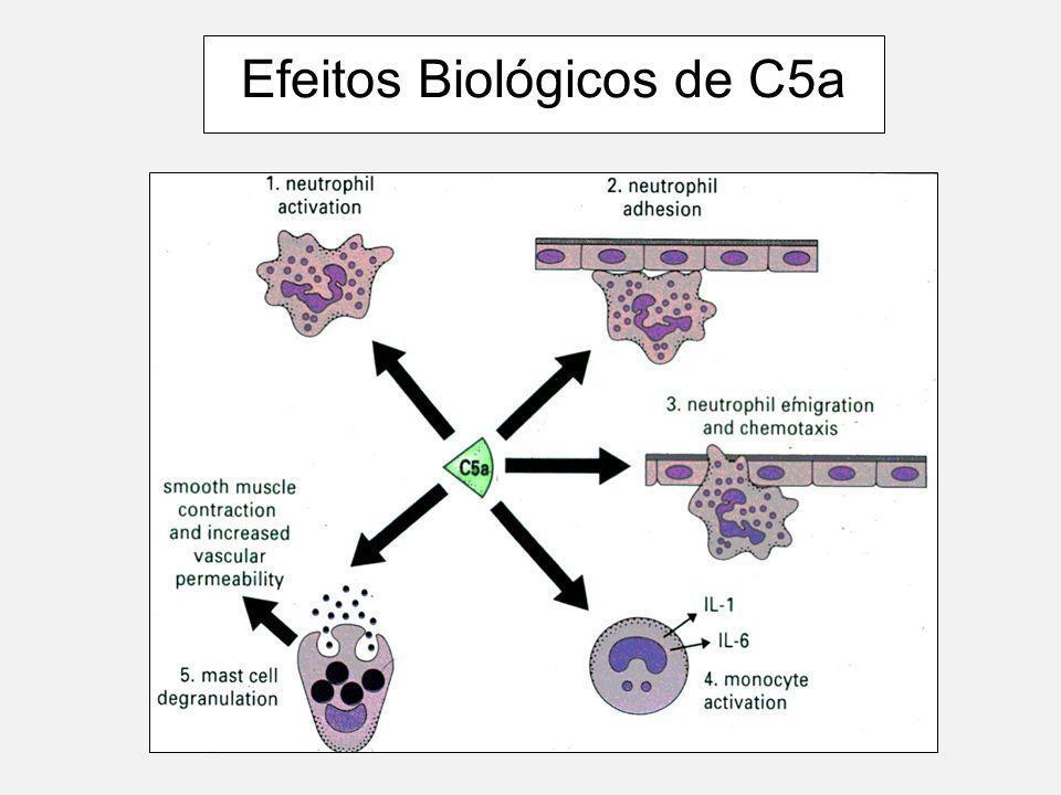 10 Limpeza de imune-complexos