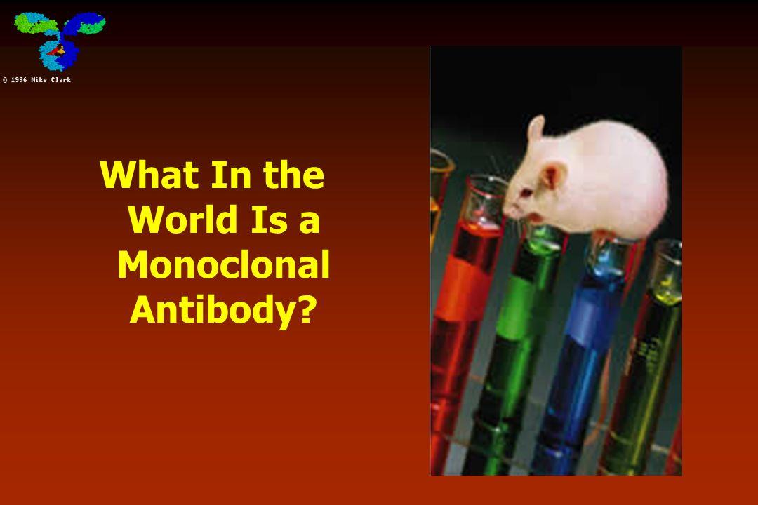 Antibodies x Antigens