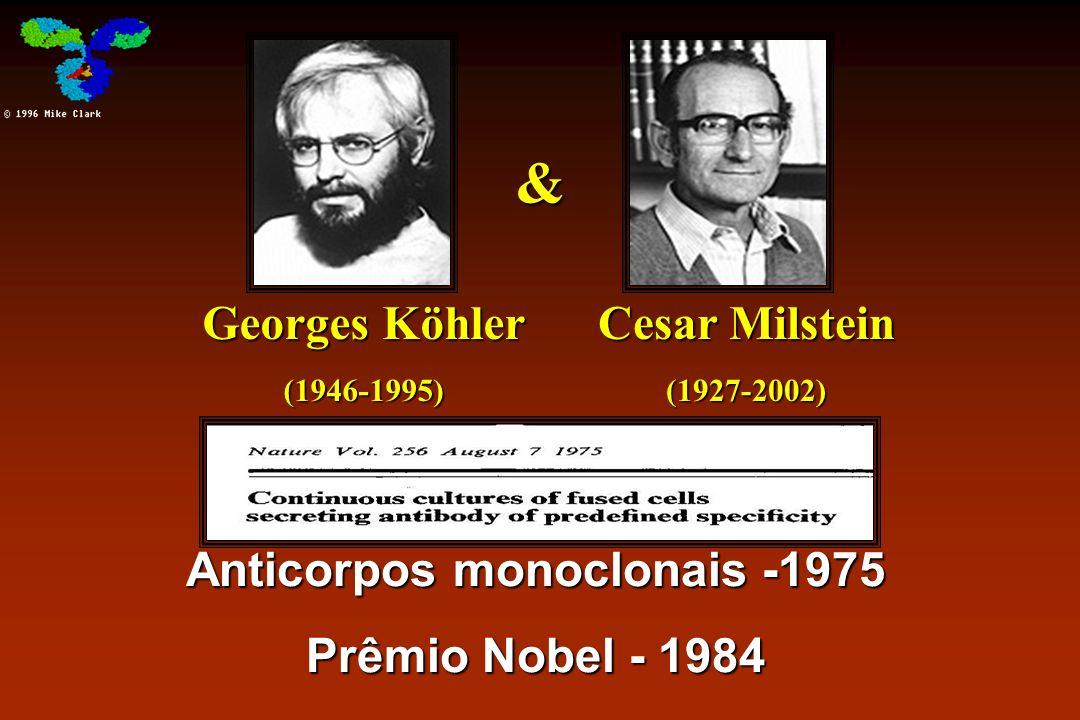 & Anticorpos monoclonais -1975 Prêmio Nobel - 1984 Georges Köhler (1946-1995) Cesar Milstein (1927-2002)