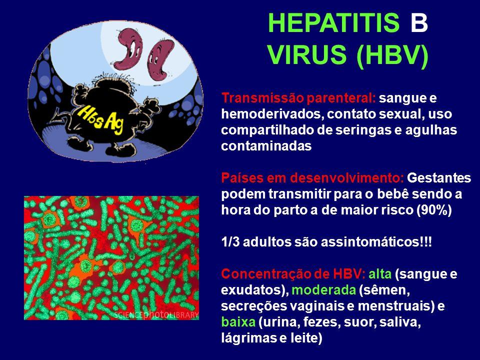 HEPATITIS B VIRUS (HBV) Transmissão parenteral: sangue e hemoderivados, contato sexual, uso compartilhado de seringas e agulhas contaminadas Países em