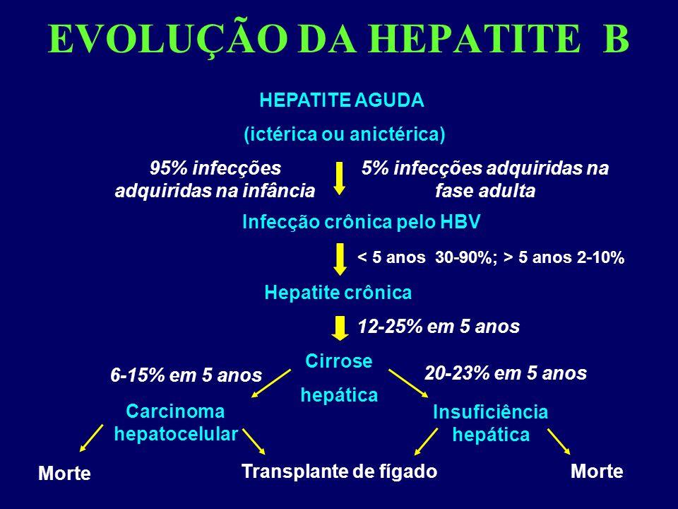 EVOLUÇÃO DA HEPATITE B Morte HEPATITE AGUDA (ictérica ou anictérica) Infecção crônica pelo HBV 5% infecções adquiridas na fase adulta 95% infecções adquiridas na infância Cirrose hepática Hepatite crônica 12-25% em 5 anos Insuficiência hepática Carcinoma hepatocelular Transplante de fígado 6-15% em 5 anos 20-23% em 5 anos Morte 5 anos 2-10%