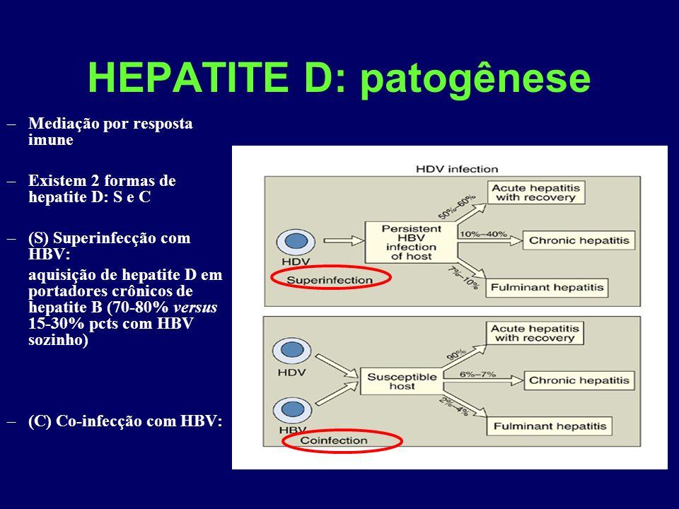 HEPATITE D: patogênese –Mediação por resposta imune –Existem 2 formas de hepatite D: S e C –(S) Superinfecção com HBV: aquisição de hepatite D em portadores crônicos de hepatite B (70-80% versus 15-30% pcts com HBV sozinho) –(C) Co-infecção com HBV: