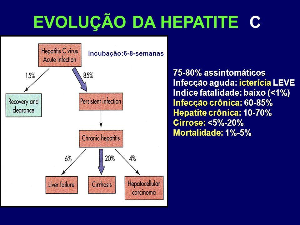 EVOLUÇÃO DA HEPATITE C Incubação:6-8-semanas 75-80% assintomáticos Infecção aguda: icterícia LEVE Indice fatalidade: baixo (<1%) Infecção crônica: 60-85% Hepatite crônica: 10-70% Cirrose: <5%-20% Mortalidade: 1%-5%
