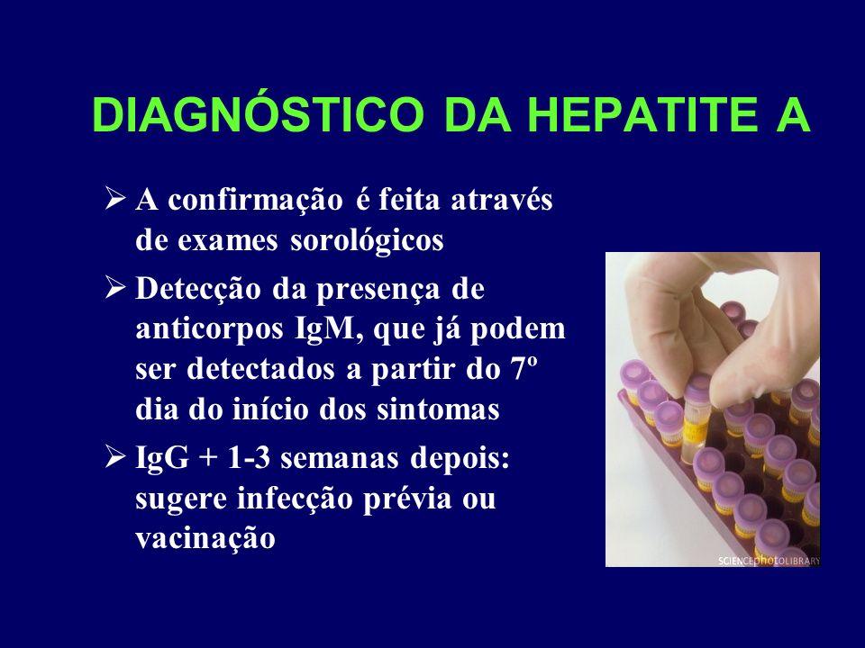 DIAGNÓSTICO DA HEPATITE A A confirmação é feita através de exames sorológicos Detecção da presença de anticorpos IgM, que já podem ser detectados a pa
