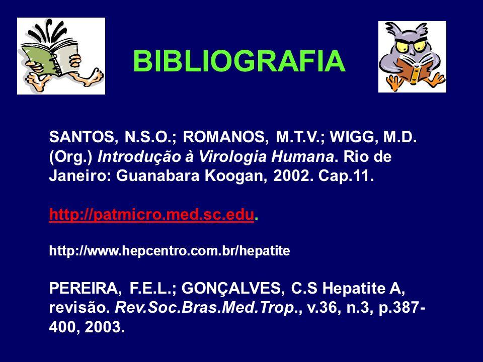 BIBLIOGRAFIA SANTOS, N.S.O.; ROMANOS, M.T.V.; WIGG, M.D. (Org.) Introdução à Virologia Humana. Rio de Janeiro: Guanabara Koogan, 2002. Cap.11. http://