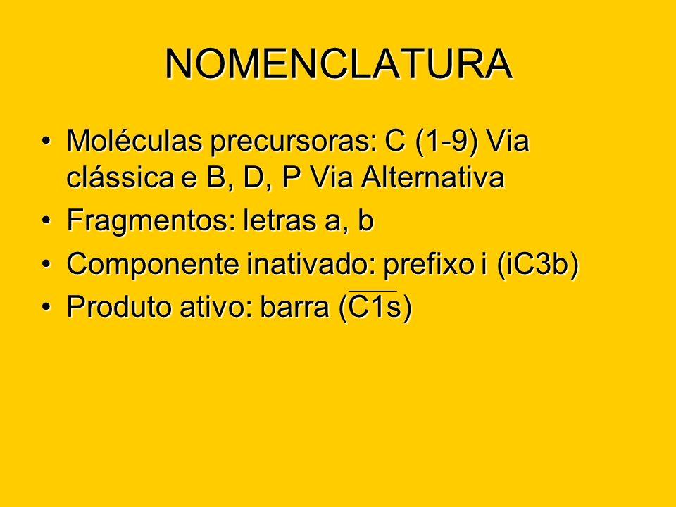 NOMENCLATURA Moléculas precursoras: C (1-9) Via clássica e B, D, P Via AlternativaMoléculas precursoras: C (1-9) Via clássica e B, D, P Via Alternativ