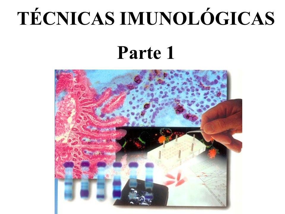 IMUNODIAGNÓSTICO: Diagnóstico laboratorial por meio de técnicas imunológicas.