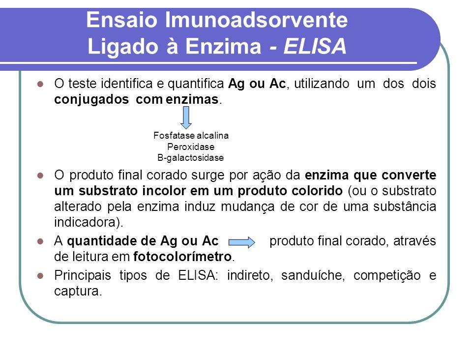 Ensaio Imunoadsorvente Ligado à Enzima - ELISA O teste identifica e quantifica Ag ou Ac, utilizando um dos dois conjugados com enzimas. O produto fina