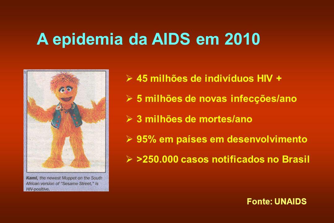 A epidemia da AIDS em 2010 45 milhões de indivíduos HIV + 5 milhões de novas infecções/ano 3 milhões de mortes/ano 95% em países em desenvolvimento >2
