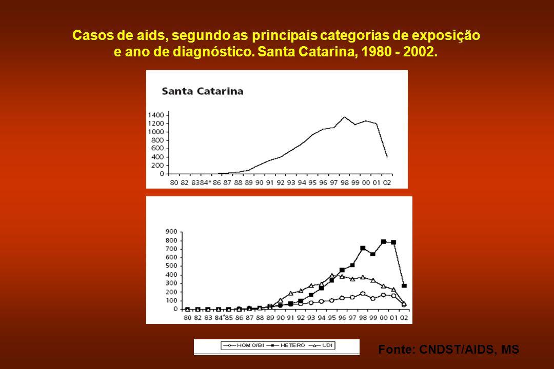 Casos de aids, segundo as principais categorias de exposição e ano de diagnóstico. Santa Catarina, 1980 - 2002. Fonte: CNDST/AIDS, MS