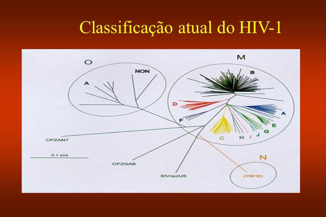Classificação atual do HIV-1