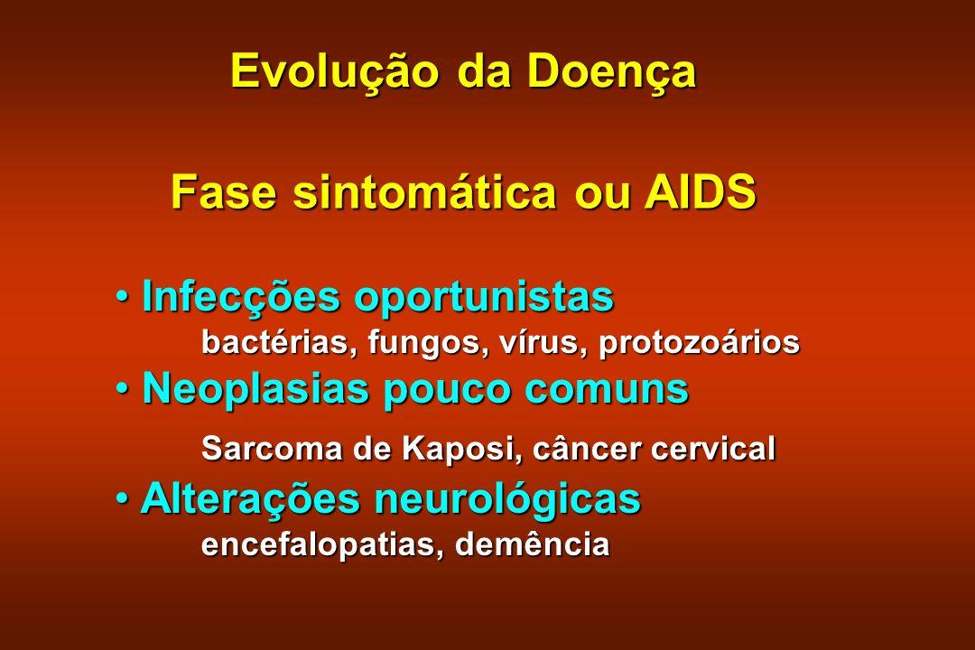Evolução da Doença Fase sintomática ou AIDS Infecções oportunistas Infecções oportunistas bactérias, fungos, vírus, protozoários Neoplasias pouco comu