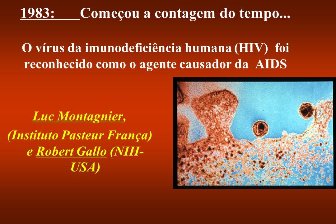 1983:Começou a contagem do tempo... O vírus da imunodeficiência humana (HIV) foi reconhecido como o agente causador da AIDS Luc Montagnier, (Instituto