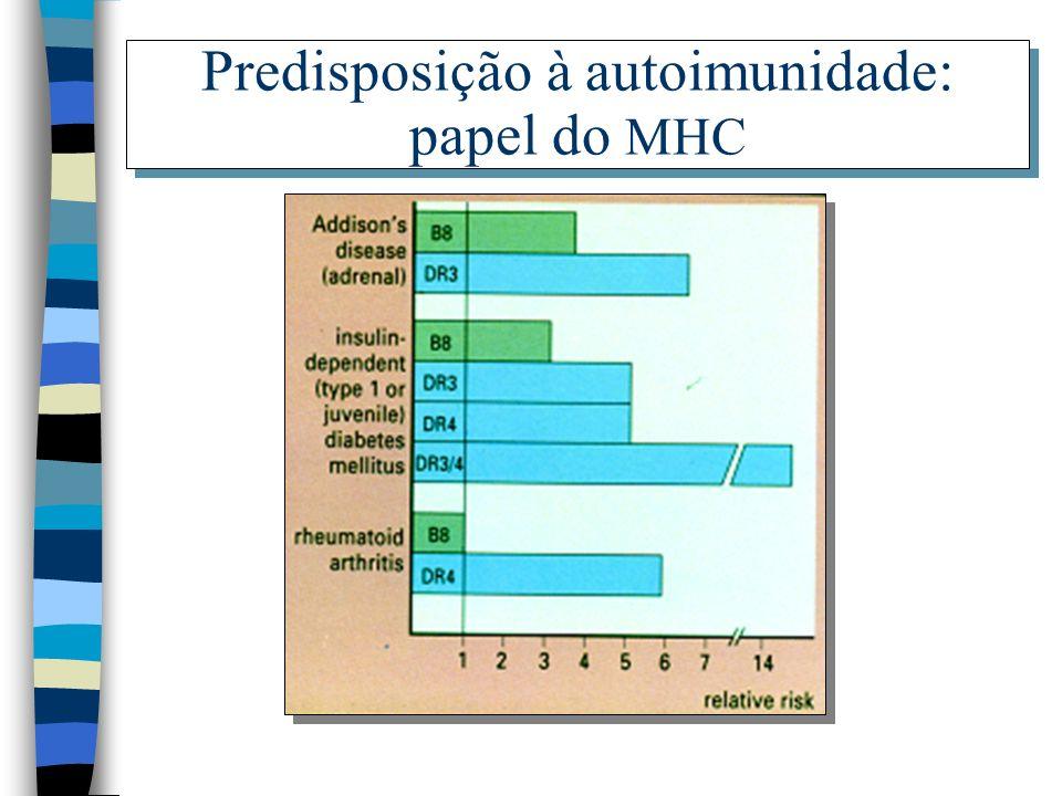 Predisposição à autoimunidade: papel do MHC