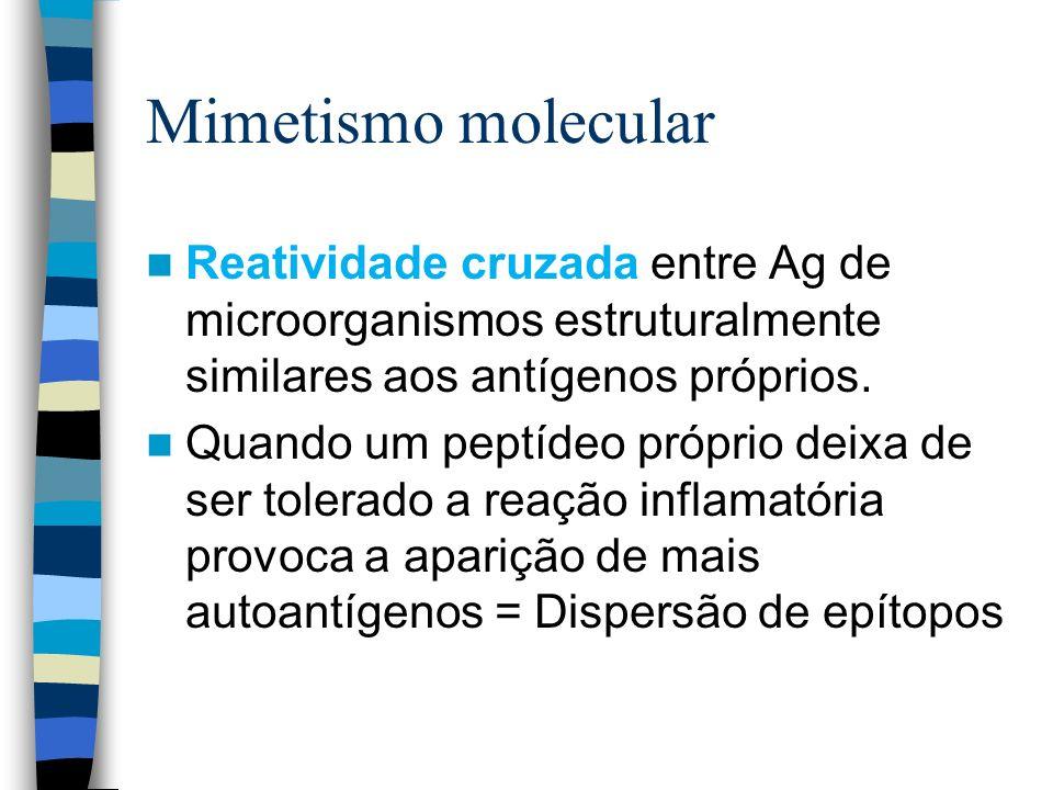 Mimetismo molecular Reatividade cruzada entre Ag de microorganismos estruturalmente similares aos antígenos próprios. Quando um peptídeo próprio deixa