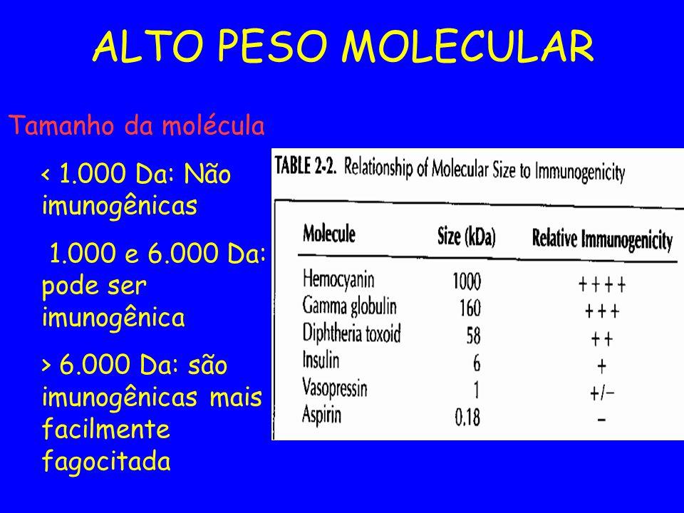 ALTO PESO MOLECULAR Tamanho da molécula < 1.000 Da: Não imunogênicas 1.000 e 6.000 Da: pode ser imunogênica > 6.000 Da: são imunogênicas mais facilmen