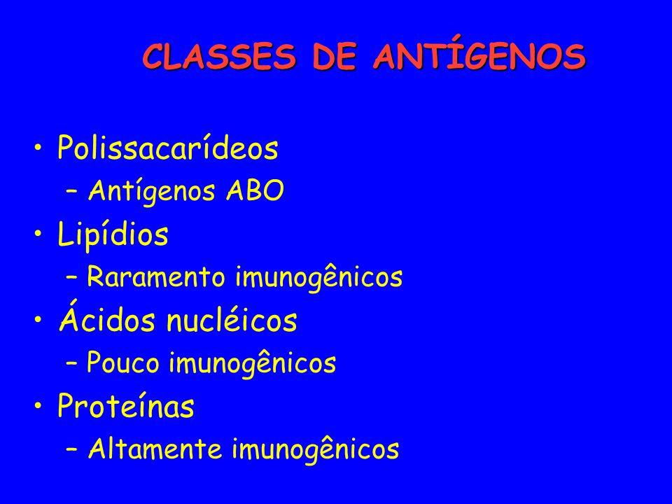 Polissacarídeos –Antígenos ABO Lipídios –Raramento imunogênicos Ácidos nucléicos –Pouco imunogênicos Proteínas –Altamente imunogênicos CLASSES DE ANTÍ