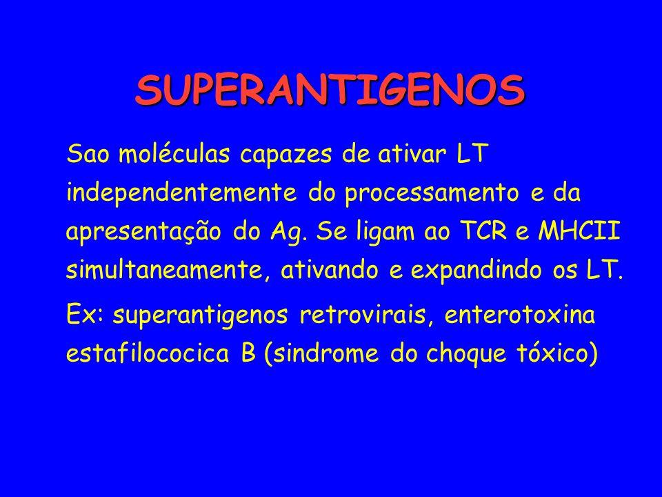 SUPERANTIGENOS SUPERANTIGENOS Sao moléculas capazes de ativar LT independentemente do processamento e da apresentação do Ag. Se ligam ao TCR e MHCII s