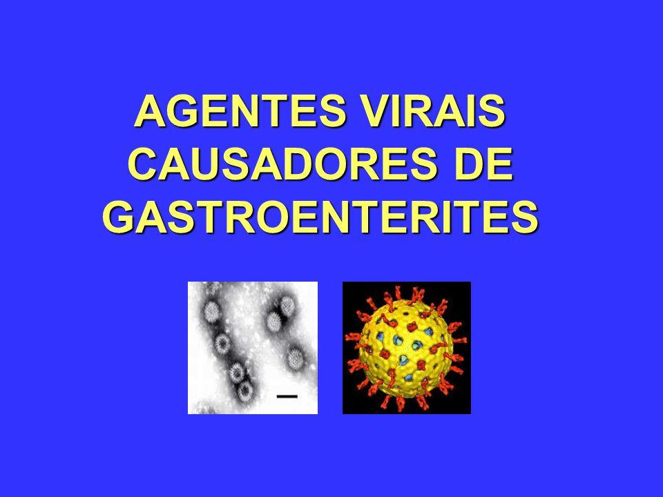 Rotavirus - Propriedades Virus é estável no meio ambiente Relativamente resistente à detergentes Susceptível à desinfecção com 95% ethanol, Lysoform e formalina Os rearranjos entre os segmentos gênicos codificadores de VP4 e VP7 podem gerar 448 combinações possíveis!.