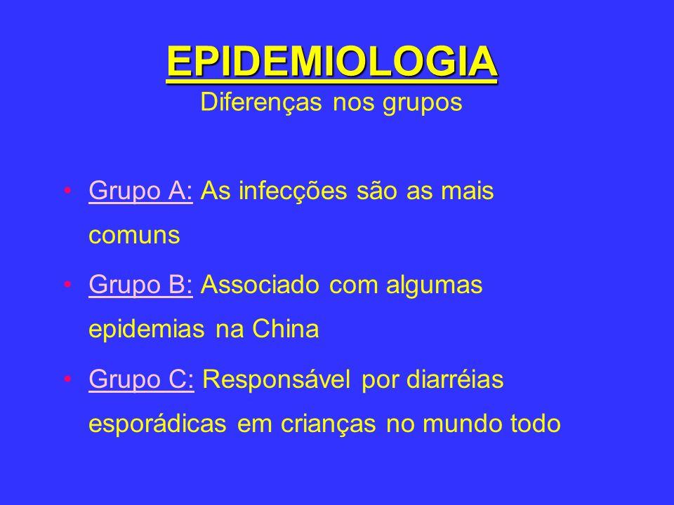 EPIDEMIOLOGIA EPIDEMIOLOGIA Diferenças nos grupos Grupo A: As infecções são as mais comuns Grupo B: Associado com algumas epidemias na China Grupo C: